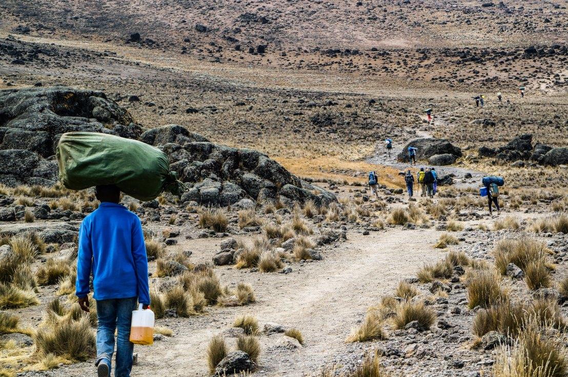 Der Kilimanjaro desLebens